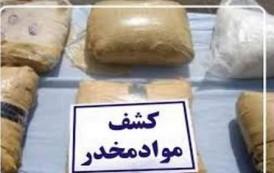 خیار فروش های قاچاقچی در مازندران دستگیر شدند