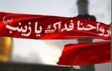 ارسال محموله کمکهای مردمی از خلیل آباد به سوریه