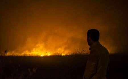 آتش سوزی نیزارهای دریاچه زریبار مریوان مهار شد