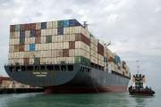 دو شرکت معتبر کشتیرانی بین المللی در راه بوشهر