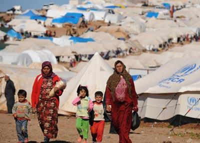 برگزاری روز جهانی پناهنده در بوشهر