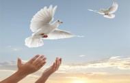 آزادی 8 زندانی ایرانی از زندانهای امارات