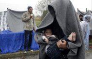 قاچاق مهاجران غیرقانونی از آزادی تا استانبول
