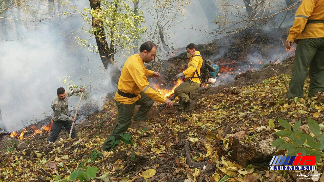 مهار آتش بخشی از جنگل های گالیکش در شرق گلستان