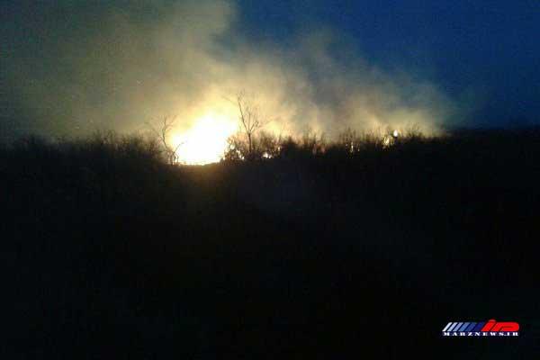 آتش سوزی در تالاب نوروزلو