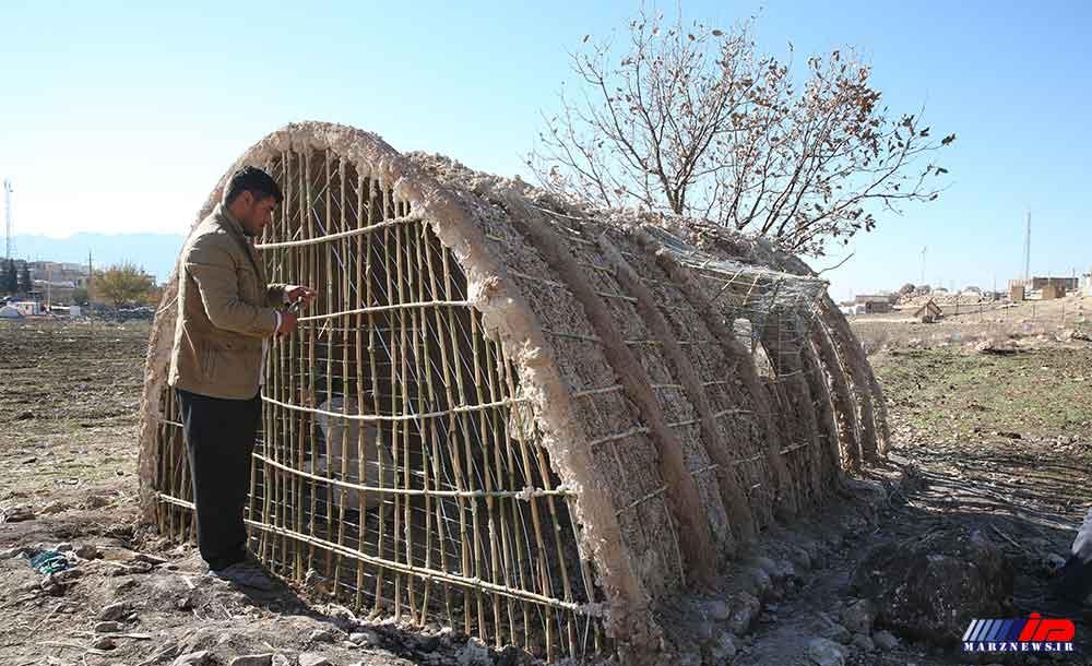 ساخت کپر در مناطق زلزله زده سرپلذهاب (عکس)