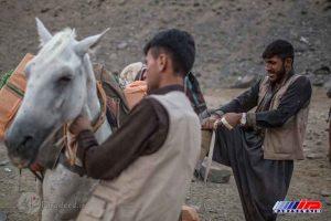 قاچاقچیان بارها را سوار بر اسب می کنند؛ آنها می دانند چه مخاطراتی در انتظار آنها است.