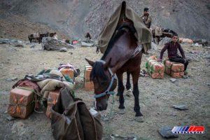 قاچاقچیان کالا ها را سوار بر اسب و قاطر می کنند تا از مرز رد کنند.