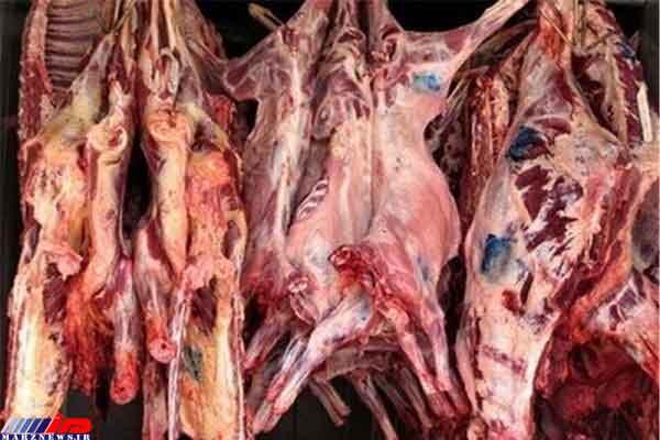 اجرای طرح زنجیره تولید گوشت قرمز در جامعه عشایری