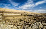 ۶۰ درصد مزارع شادگان به علت خشکسالی آبیاری نشد