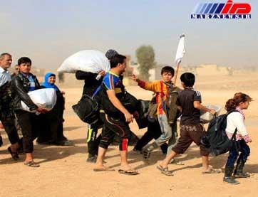 ۱۲۰۰ خانواده آواره عراقی به دیالی بازگشتند