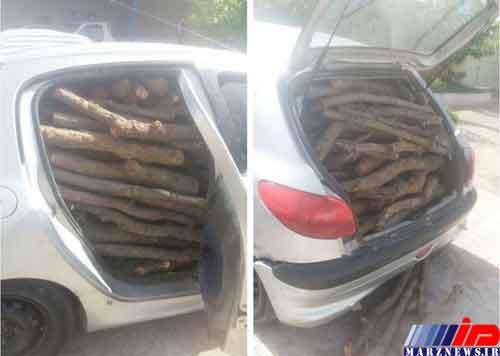 قاچاق چوب با خودروهای حامل گوشت و لبنیات در مازندران