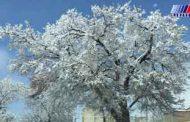 برف آذربایجان شرقی را سفید پوش کرد