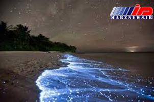 شب تاب دریایی؛ جاذبه ای که ساحل چابهار را آبی و درخشان می کند