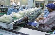ایران و فرانسه با هدف صادرات کیسه خون تولید می کنند