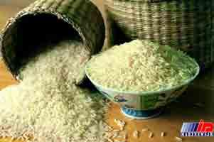 اختلاف 500 میلیون دلاری آمار مصرف برنج در جیب کاسبان واردات