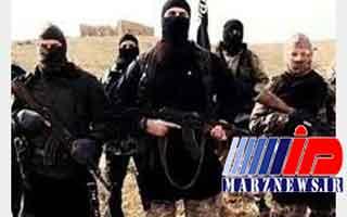 هلاکت ۱۹ عضو داعش در حملات هوایی در