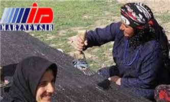 زن چادرنشینی که ۸ میلیارد تومان بدهی مالیاتی دارد