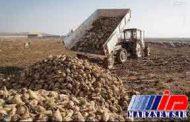 پرداخت شکر به جای پول به کشاورزان اردبیلی پس از یک سال انتظار