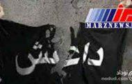 قتل ۱۲ نفر از اعضای یک خانواده توسط داعش