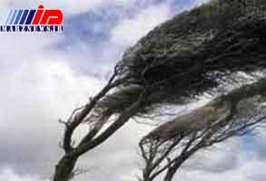 تند باد غرب مازندران را درنوردید