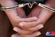 اعضای گروهک تروریستی در خراسان جنوبی دستگیر شدند