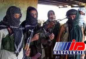 طالبان آتش بس تعطیلات عید فطر را پذیرفت