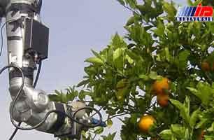 دانشجویان مازندران ربات کشاورز می سازند