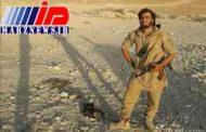 حاتم مرمضی عضو داعش بود