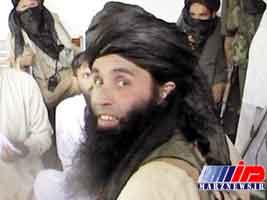 رهبر گروه تحریک طالبان به هلاکت رسید