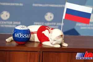 آشیل این بار پیروزی تیم روسیه بر مصر را پیشگویی کرد