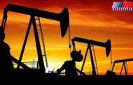 عربستان در صدد جلب حمایت تولیدکنندگان نفت خلیج فارس است