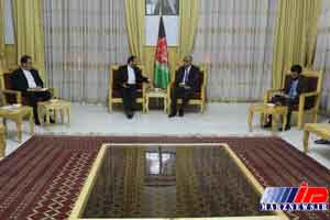 استاندار هرات افغانستان خواستار تداوم برق صادراتی ایران شد