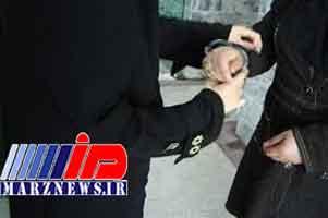 دستگیری زنان مدل در بندرعباس به اتهام اقدامات خلاف عفت