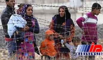 1.7 میلیون آواره سوری به مناطق خود باز خواهند گشت
