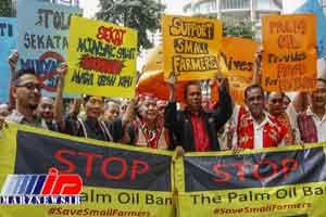 واردات روغن پالم به اروپا آزاد شد
