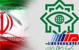 وزارت اطلاعات 2 باند قاچاق ارز و طلا را متلاشی کرد