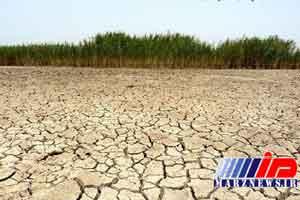 مساحت زمین های کشاورزی عراق به نصف رسید