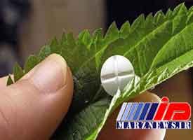 واردات داروهای گیاهی ممنوع است