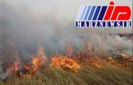 آتشسوزی هورالعظیم صددرصد عمدی بود
