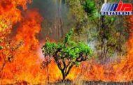آتش به جان تالاب بین المللی میانکاله افتاد