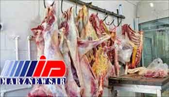 واردات گوشت هم تاثیری بر بازار نگذاشت