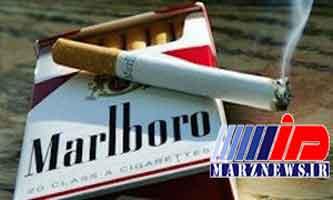 تلاش مدیر دولتی برای کسب سود از واردات سیگار