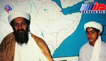 احتمال بازگشت القاعده به سرکردگی پسر بن لادن/ همکاری محرمانه عربستان با القاعده در یمن