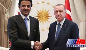 اردوغان از امیر قطر به خاطر حمایت از ترکیه تشکر کرد