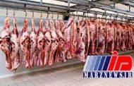 رشد 300 درصدی صادرات دام زنده عاملی مهم در گرانی گوشت قرمز