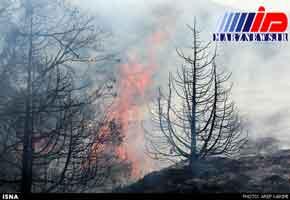 شعله ور شدن مجدد آتش در جنگلها و مراتع مریوان