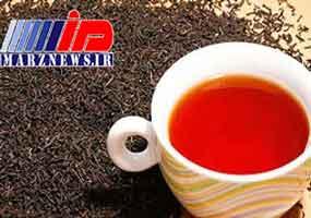 صادرات چای ایرانی آزاد است