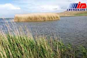 «کانی برازان» سرزنده ترین تالاب حوضه دریاچه ارومیه