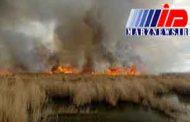 آتش سوزی هور العظیم همچنان ادامه دارد